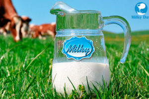 How Europe's Leading Dairy Equipment Manufacturer Partners with Milky Day – And Why You Should, Too.