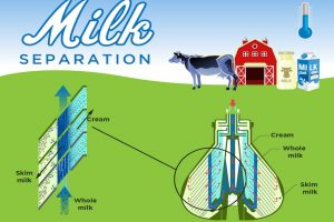 How does a milk separator work?