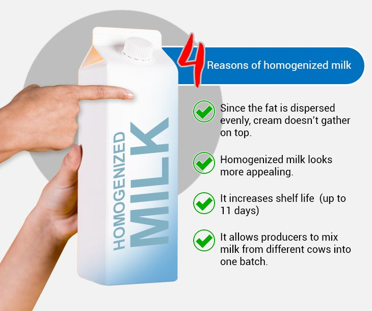 What does homogenized milk mean